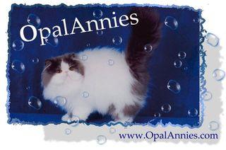 OpalAnnies