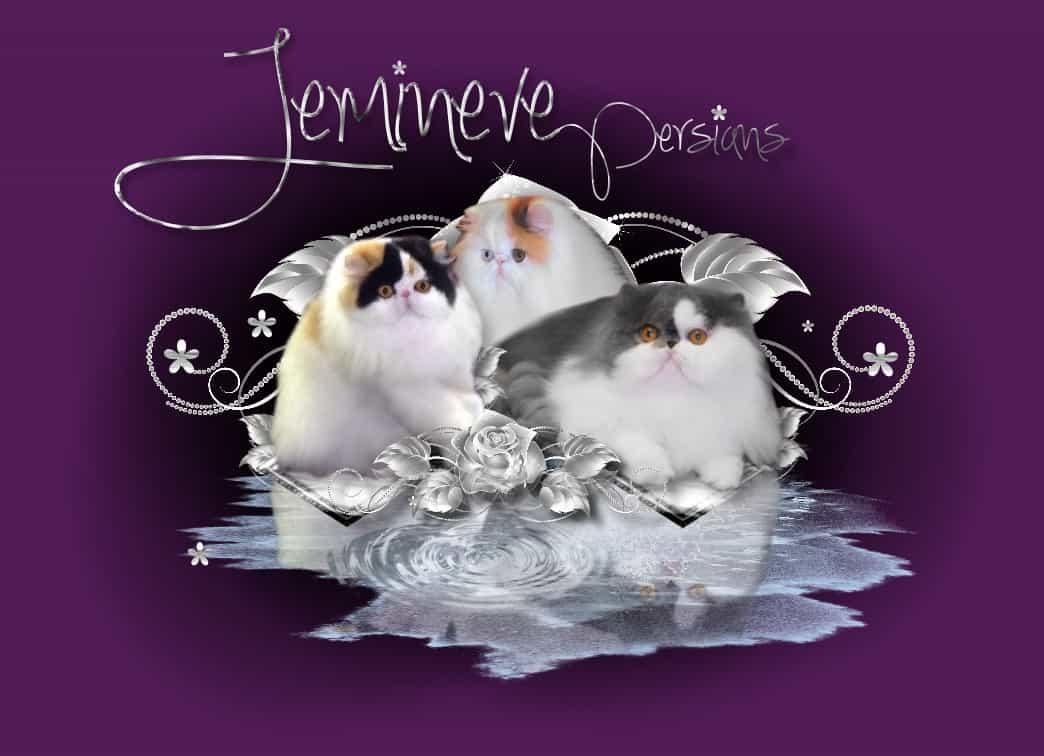 Jemineve