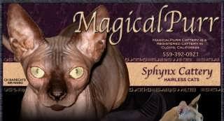 MagicalPurr