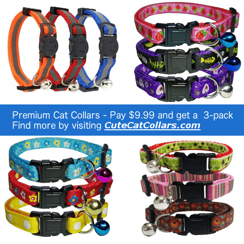 Cute Cat Collars website